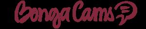 Affiliate Programs for Webcam Sites